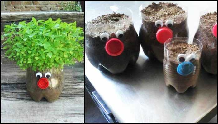 Plastic Bottle Planters Craft Projects For Every Fan