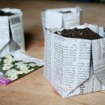 Biodegradable Newspaper Seedling Pot Samples
