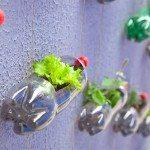 Soda Bottle Recycling Ideas