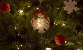 How to make crystal snowflake ornaments with Borax