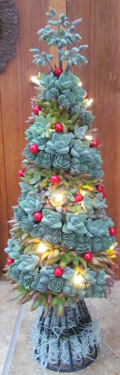 Succulent Christmas Tree Craft Projects For Every Fan