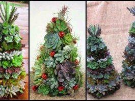 Succulent Christmas Tree Main Image