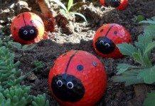 Golf Ball Ladybug Featured