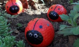 Make your own golf ball ladybugs