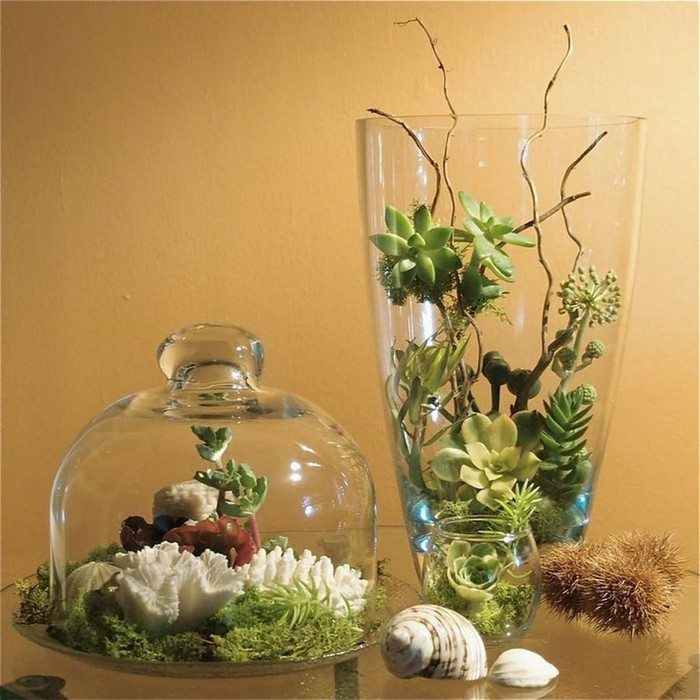 how to make cute terrariums craft projects for every fan
