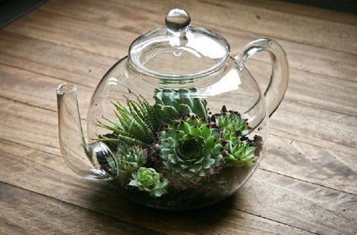 terrarium craft ideas how to make terrariums craft projects for every fan 3066