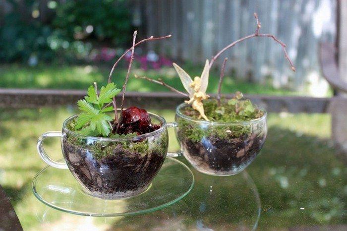 Cute Terrariums