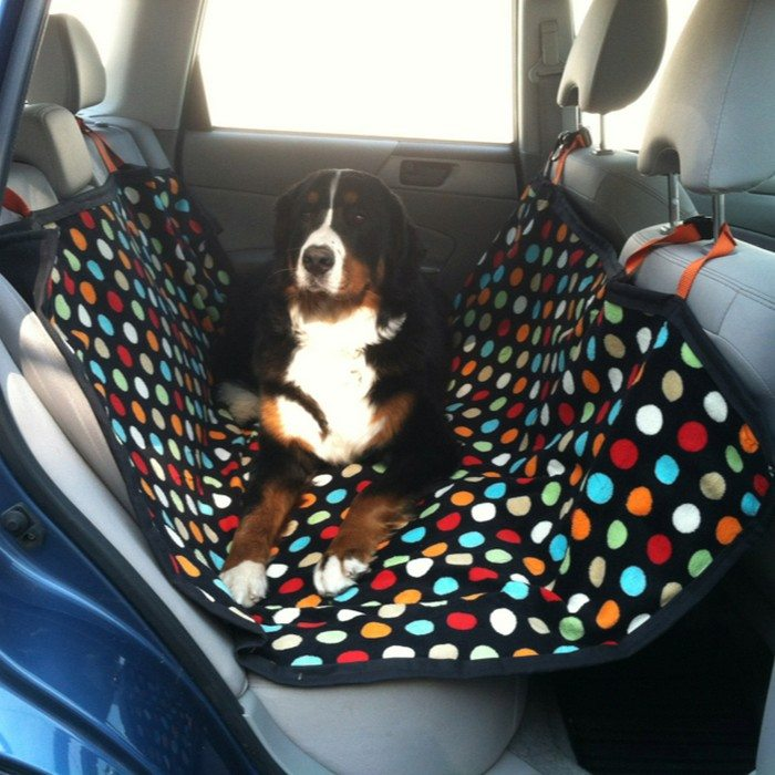 How To Make A Dog Hammock For Your Car Craft Projects
