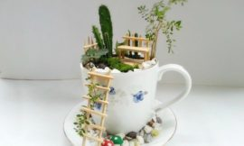 How to make a fairy garden with teacups