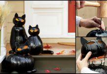 Black Cat O Lantern