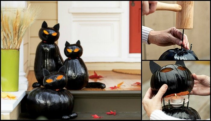 Black Cat O'Lanterns!
