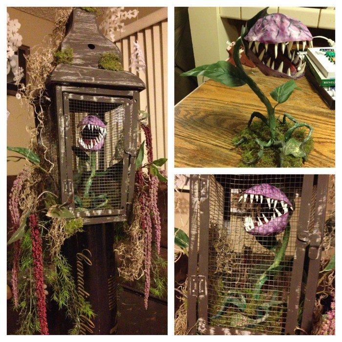 Monster Plants