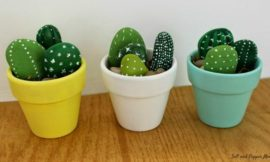 How to make cactus rocks