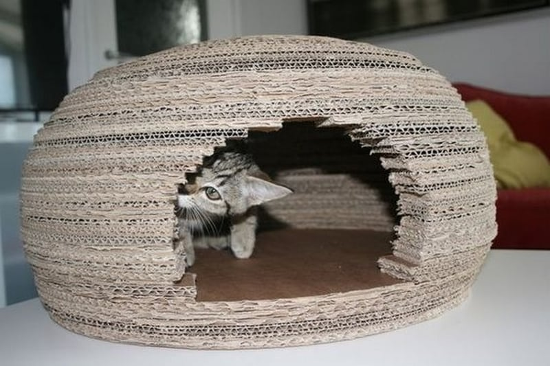 Your pet cat will have a new place to chill out, that's for sure!
