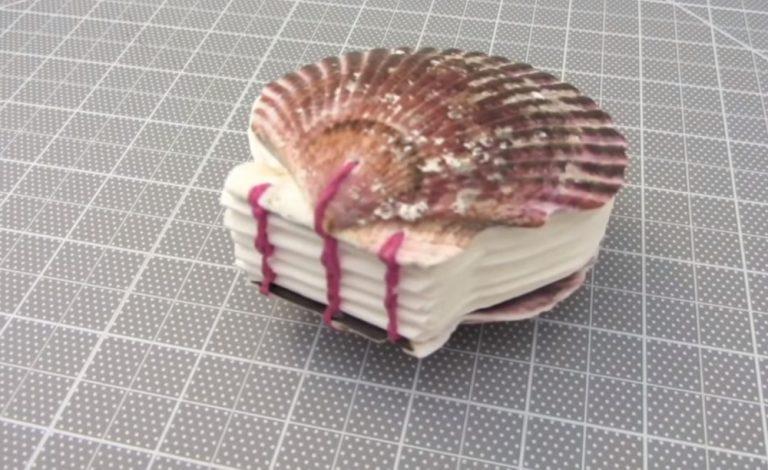 DIY Seashell Book