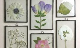 How to Make Pressed Flower Frames